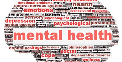 Mental Health Referral Fund